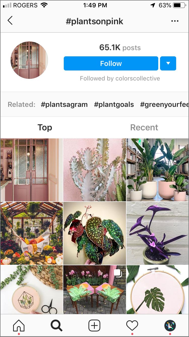 hacks de hashtag instagram: suivez les hashtags